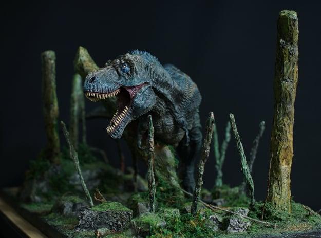 T-rex (Medium/Extra Large size) in White Natural Versatile Plastic: Medium