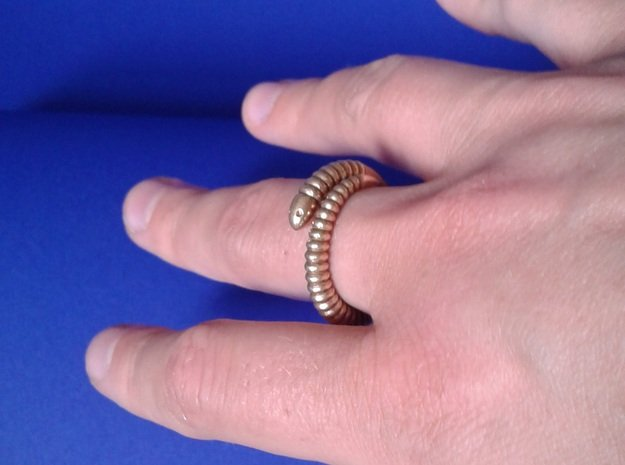 """a. """"Life of a worm"""" Part 1 - ring in Natural Brass"""