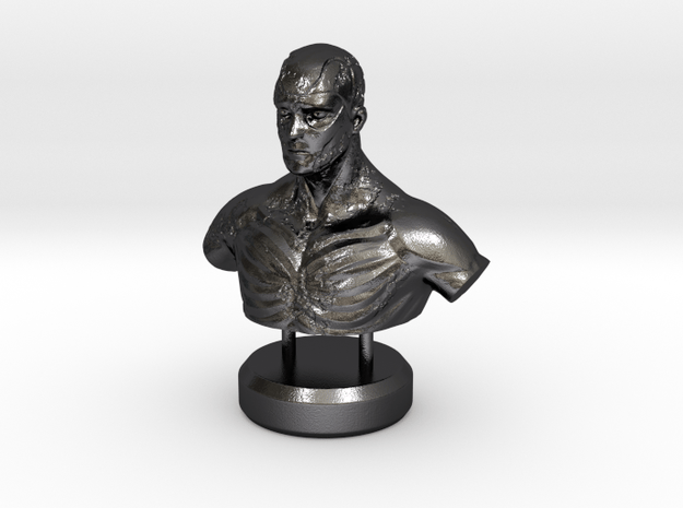"""""""Fading Honor"""" - Sculpture in Polished and Bronzed Black Steel"""