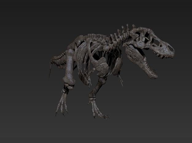 Tyrannosaurus Skeleton in White Natural Versatile Plastic