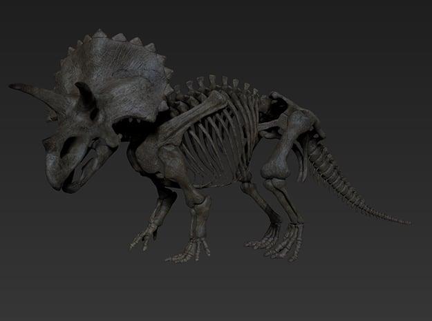 Triceratops Skeleton in White Natural Versatile Plastic