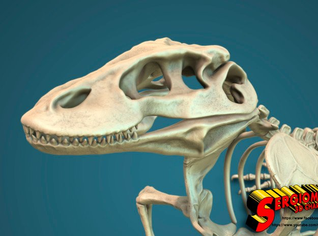 Komodo Craneus and Neck Skeleton 1:5 Scale in White Natural Versatile Plastic