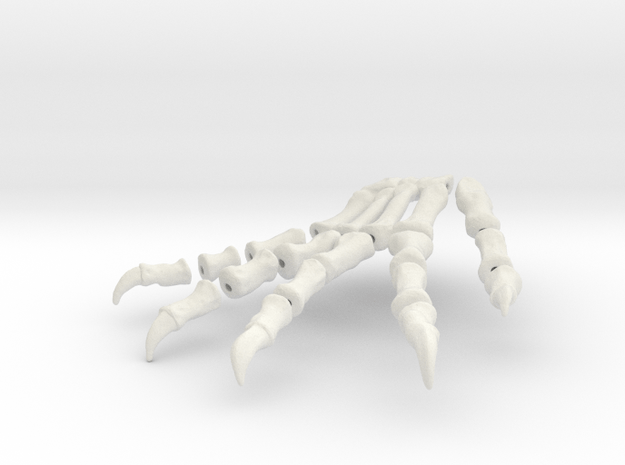 Komodo Left Foot Front 1:5 Scale in White Natural Versatile Plastic