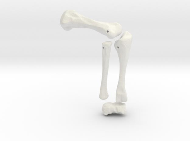Komodo Left Leg Front 1:5 Scale in White Natural Versatile Plastic