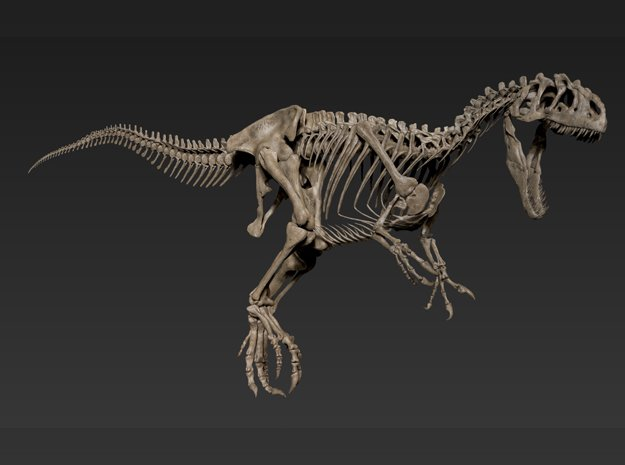 Allosaurus Skeleton (1:18) in White Natural Versatile Plastic