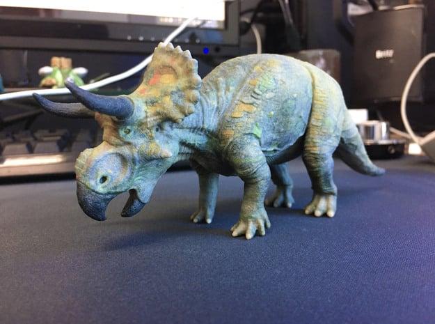 Nasutoceratops middle size (color) in Full Color Sandstone