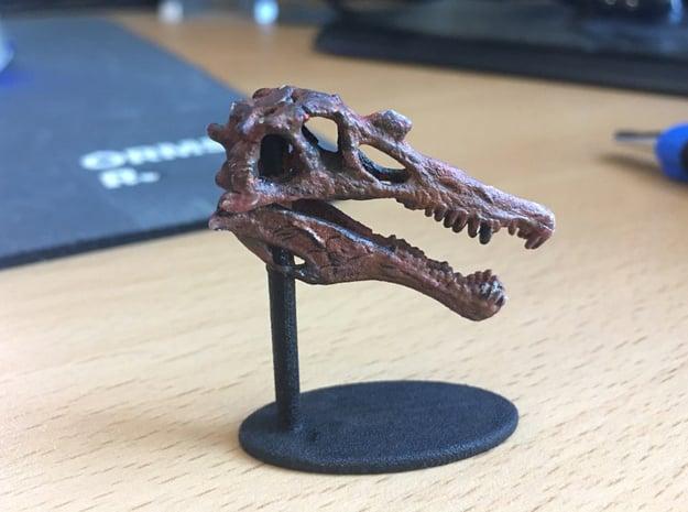 Spinosaurus Skull in White Natural Versatile Plastic: Small