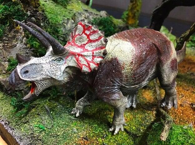 Triceratops (Medium/Large size) in White Natural Versatile Plastic: Medium