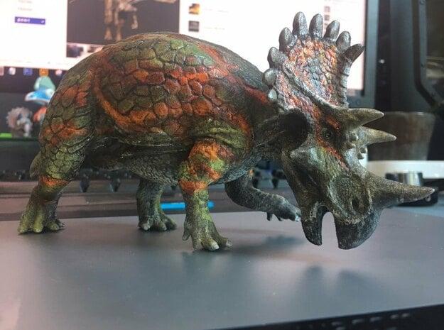 Regaliceratops (Small/Medium/Large size) in White Natural Versatile Plastic: Small