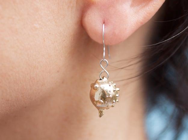 Blowfish Earrings  in Natural Brass