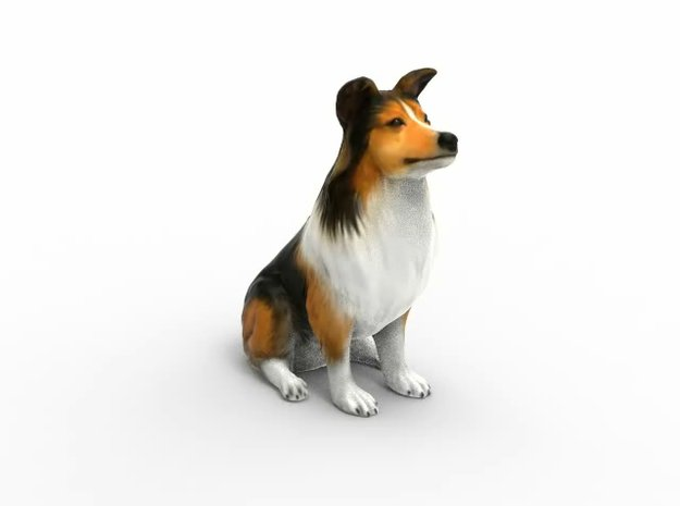 Dog Rough Collie Pet 8cm in Full Color Sandstone
