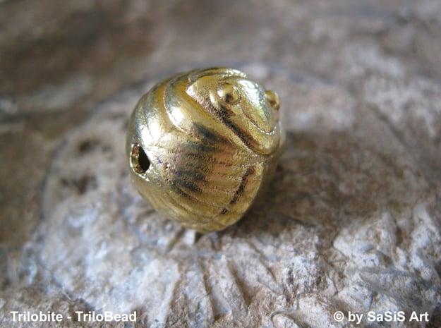 Trilo Bead Trilobite  in Polished Brass