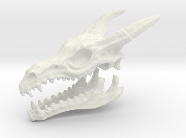 Dragon Skull and jaw.