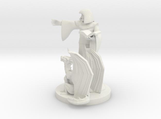 Half Elf Mage and his Familiar Pseudodragon in White Natural Versatile Plastic