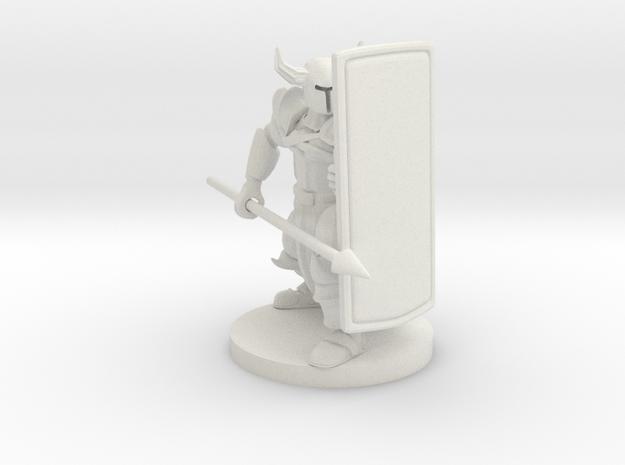 Tower Shield Paladin