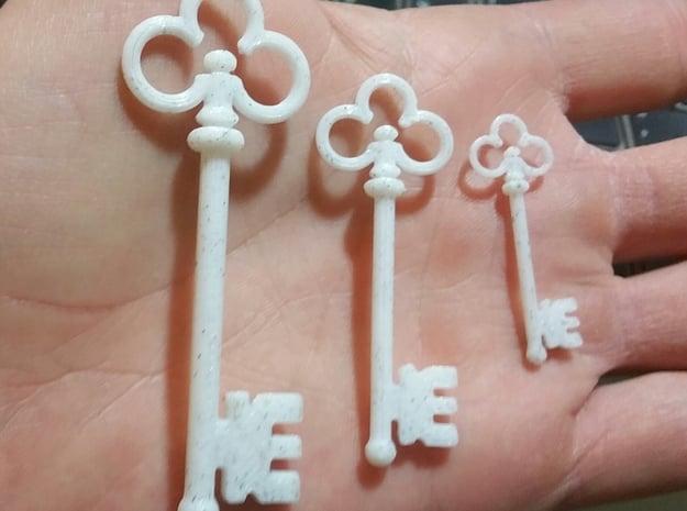Skeleton Key Pendant #1 in Black Natural Versatile Plastic: Small