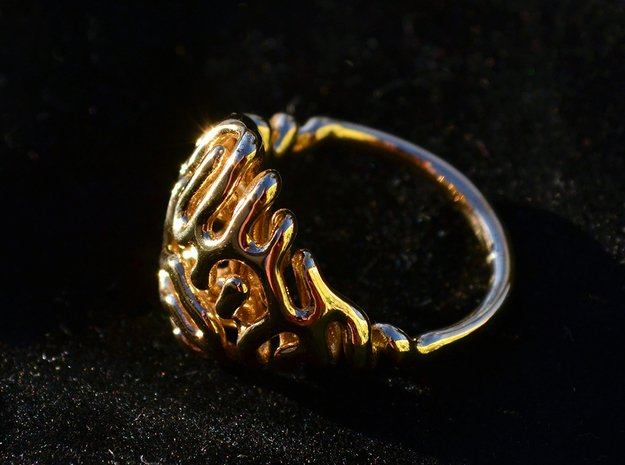 Reaction Diffusion Ring  in Polished Brass