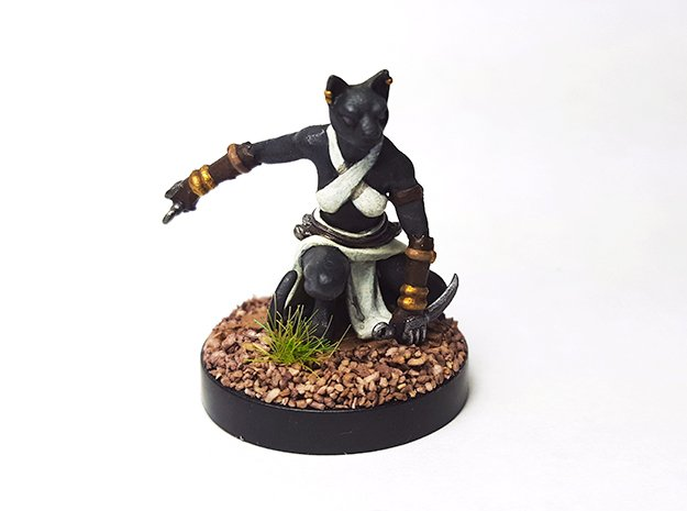 Tabaxi Rogue (Female) in Smooth Fine Detail Plastic