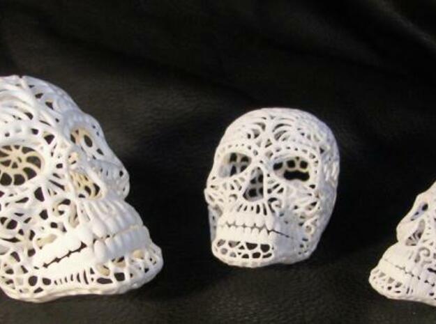 Nautilus Sugar Skull - Large in White Processed Versatile Plastic