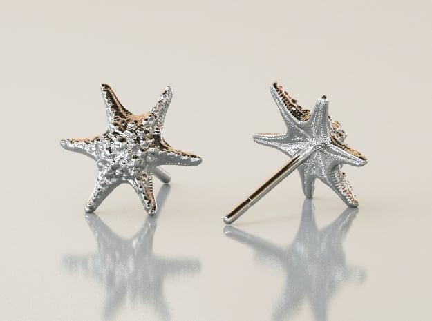 Sea Star Earrings in Polished Silver