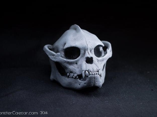 Skull 6 Hollow 2 in White Natural Versatile Plastic