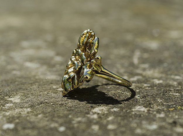 Coral Ring I   in Polished Brass