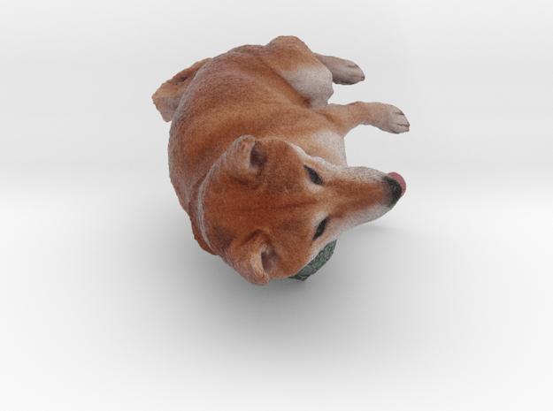 Shiba Inu Dog_6CM in Natural Full Color Sandstone