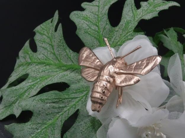 Hummingbird Hawk-Moth Pendant (hollow version) in 14k Rose Gold Plated Brass