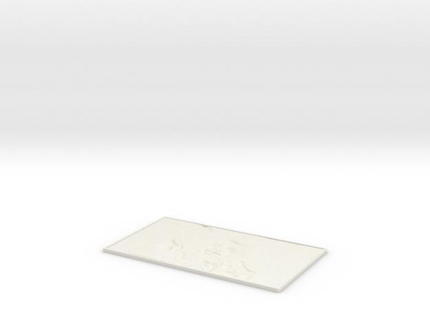 Neil DeGrasse Tyson lithophane in White Natural Versatile Plastic