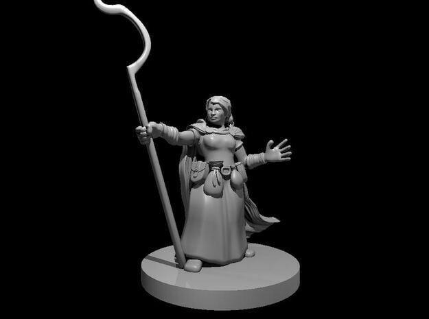 Dwarf Female Druid 2 in Smooth Fine Detail Plastic