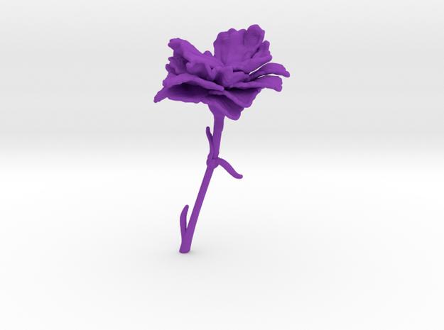 Carnation in Purple Processed Versatile Plastic
