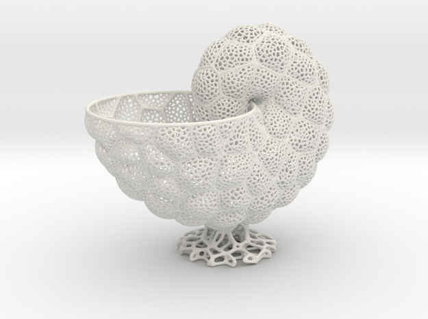 Nautilus Vase (small version) in White Natural Versatile Plastic