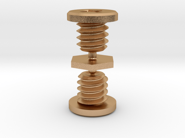Metal Screw for Ricoh Theta Z1 cage in Natural Bronze