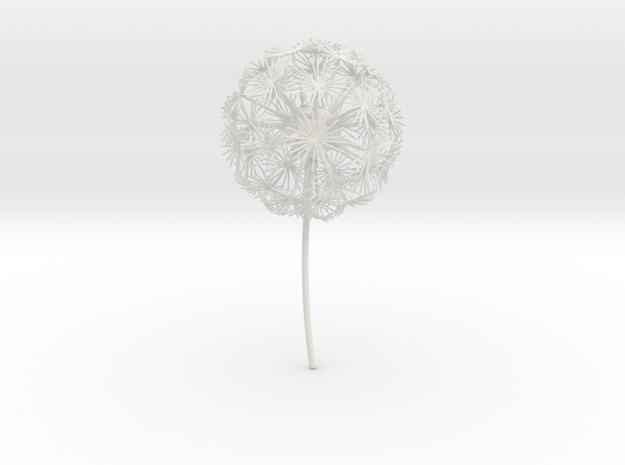 Dandelion abstract art piece in White Natural Versatile Plastic