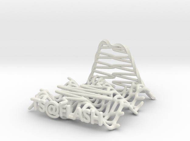 TS@FLASH V20 in White Natural Versatile Plastic