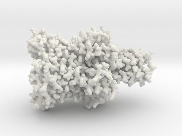 Mechanosensitive Ion Channel - All Atom in White Natural Versatile Plastic