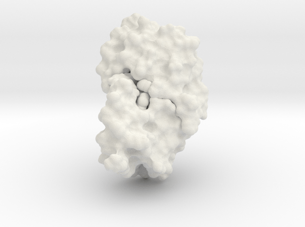 HIV Protease - Molecular Surface in White Natural Versatile Plastic
