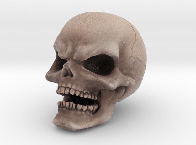 COLOR Evil Skull in Full Color Sandstone