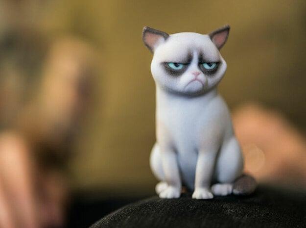 Grumpy Cat in Full Color Sandstone
