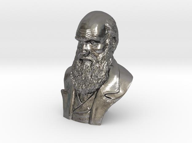 """Charles Darwin 9"""" Bust in Polished Nickel Steel"""