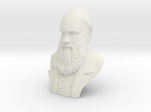 "Charles Darwin 6"" Bust in White Natural Versatile Plastic"