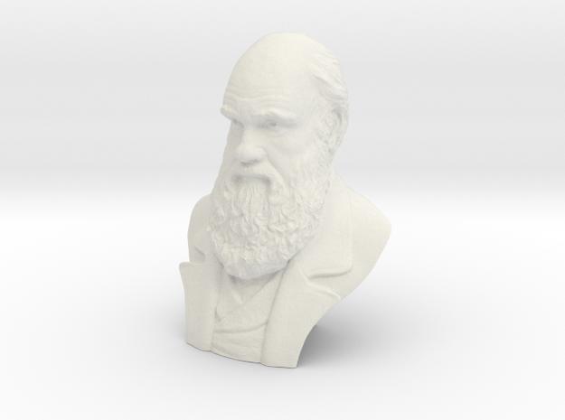 "Charles Darwin 4""Bust in White Natural Versatile Plastic"