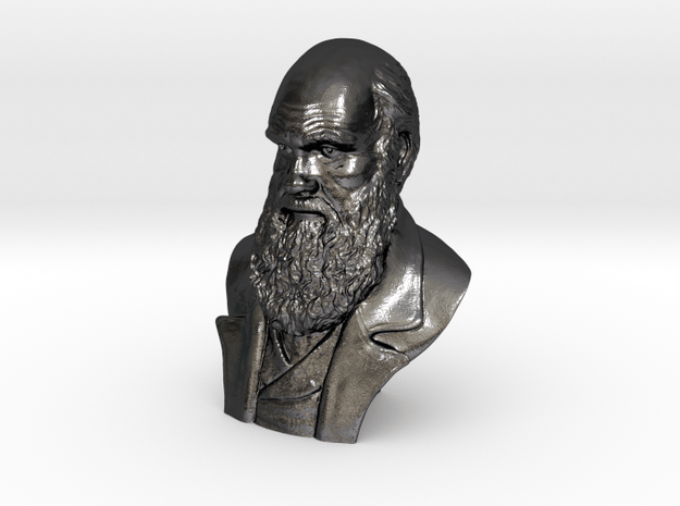 """Charles Darwin 16"""" Bust in Polished and Bronzed Black Steel"""