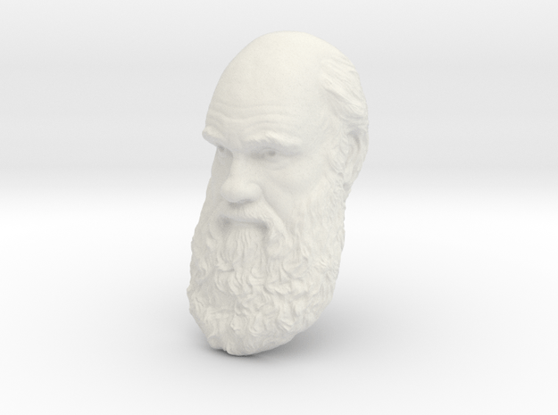 """Charles Darwin 15"""" Life Size Head, Wall Mount in White Natural Versatile Plastic"""