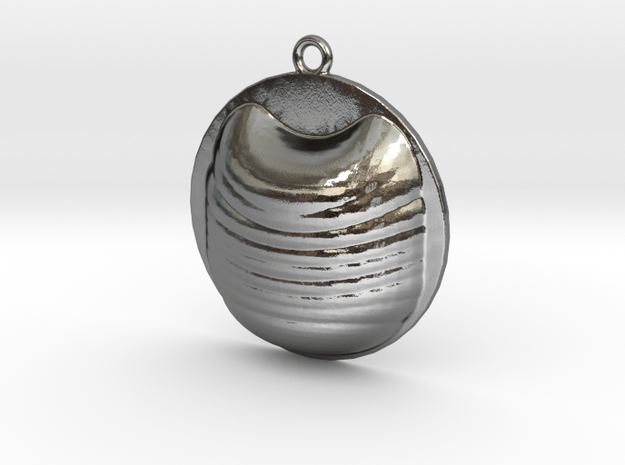 Beauty Cat Look Pendant  in Polished Silver
