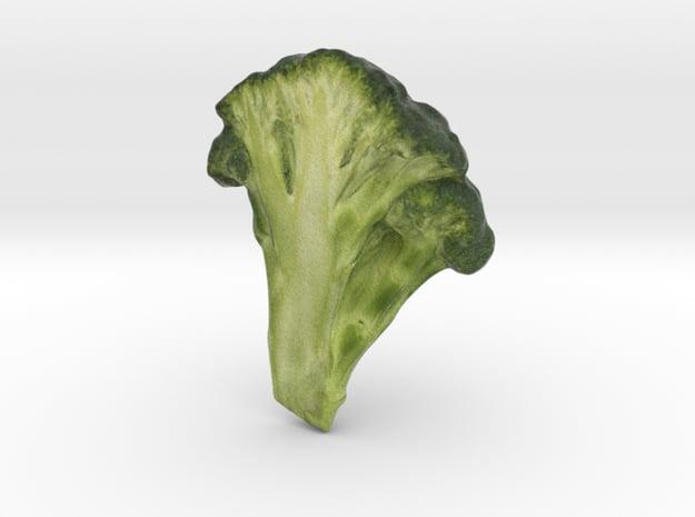 The Broccoli in Full Color Sandstone