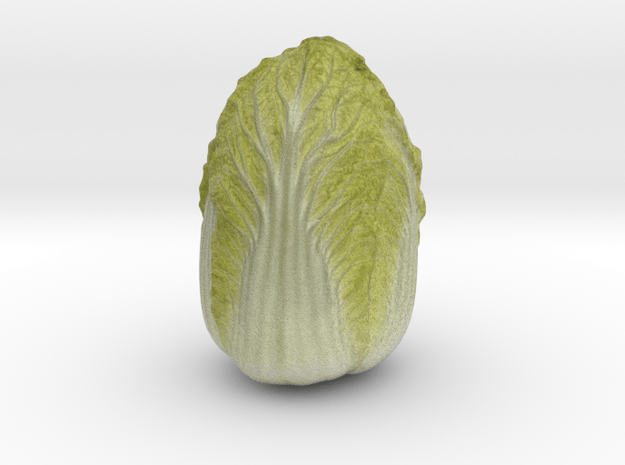 The Chinese Leaf in Full Color Sandstone