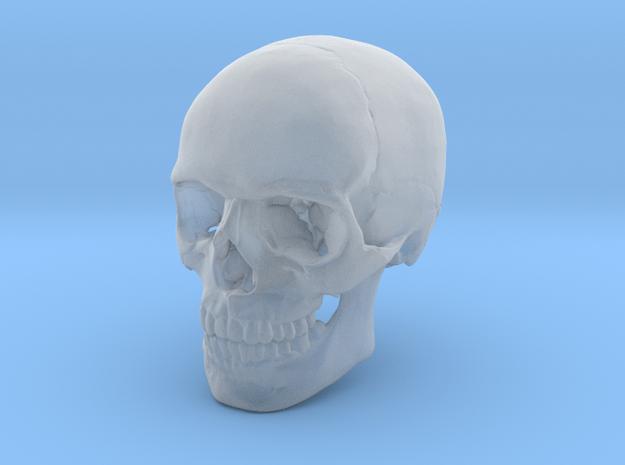 Skull in Smoothest Fine Detail Plastic