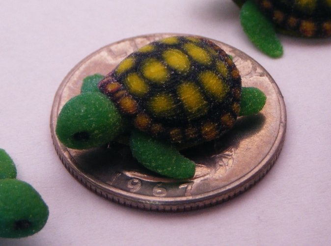 Full Color Sandstone Turtle on a Coin