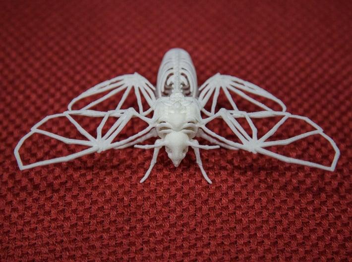 Death's Head Hawkmoth Skeleton 3d printed